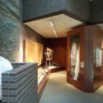 宇宙そして地球という壮大なテーマを学べるミュージアムパーク茨城自然博物館