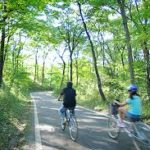 桜見物、運動不足解消、さらに美味しいスイーツが味わえる「行方さくらスイーツサイクリング」