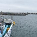 場所取り必死!「日立久慈漁港」は人気の釣りスポット