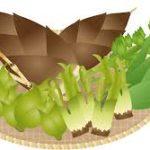 茨城の山へ山菜を採りに出掛け「春の味覚」を楽しもう