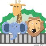 60年の歴史「日立かみね動物園」夜景スポットとしても人気です