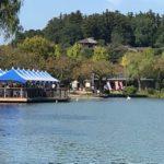 癒しを求めるなら、緑豊かな水戸市千波湖へ